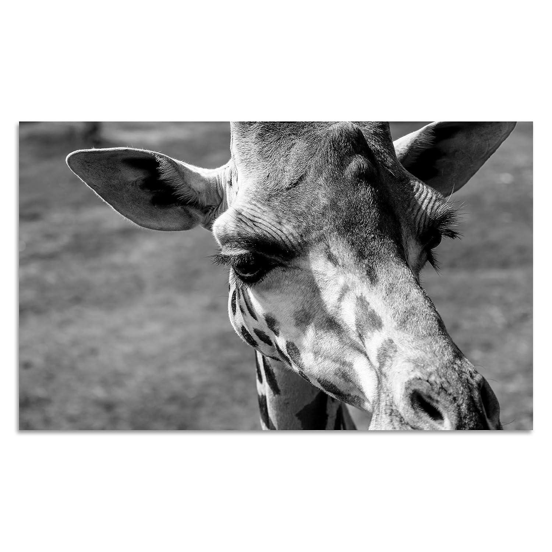 Cuadros Lifestyle Acrylglasbild   Wandbild Glasbild Acrylbild Rahmenlos   Torsten Reuter   Giraffe, Größe:150x100 cm