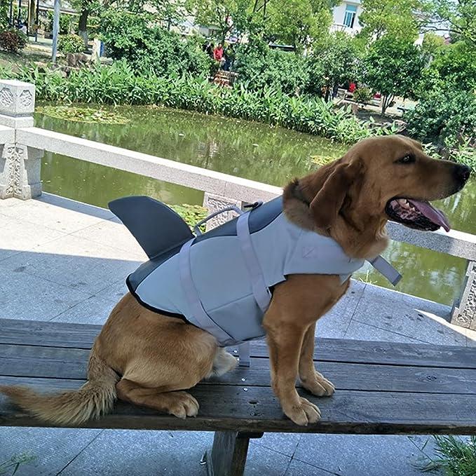 AOLVO - Chaleco Salvavidas para Perro, Chaleco Salvavidas para Perro, Chaleco Salvavidas Ajustable, Apto para Todos los Perros tiburón, S: Amazon.es: ...