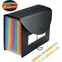 Expanding File Folder Accordian File Organizer with Cover/Portable A4 Letter Size Filing Box, Accordion Bill Paper Document Receipt Organizer High Capacity Plastic Bag with Colored Tab (12 Pockets)