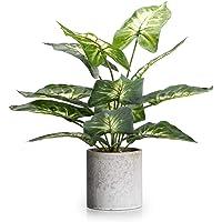 Velener 15″ Artificial Potted Green Leaf Plant in Pot for Desk Top Decor (Taro Leaf)