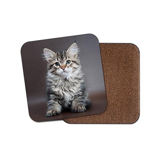 Adorable posavasos de gatito - Gatitos Gatos Lindo esponjoso Mamá ...