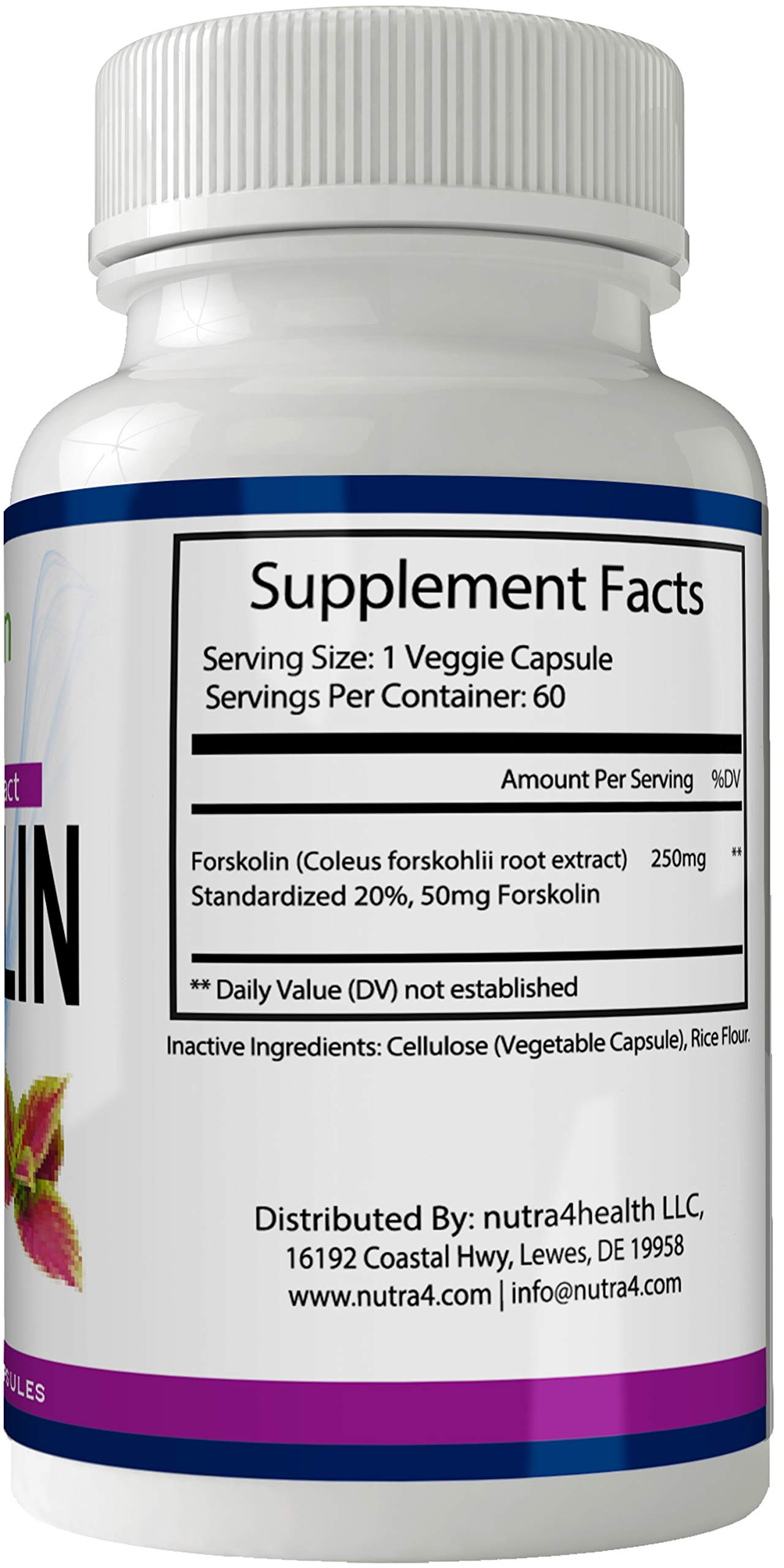 Retro Lean Forskolin for Weight Loss Pills Tablets Supplement - Capsules with Natural High Quality Pure Forskolin Extract Diet Pills, Boost Metabolism and Digestive Function by nutra4health LLC (Image #2)