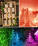 MINGER RGB Fairy Lights with APP, Led Multicolor