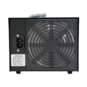 ECO-WORTHY 3.5 G 220 V Generador De Ozono Industriales - Purificador De Aire Ozono Purificador De Aire: Amazon.es: Hogar