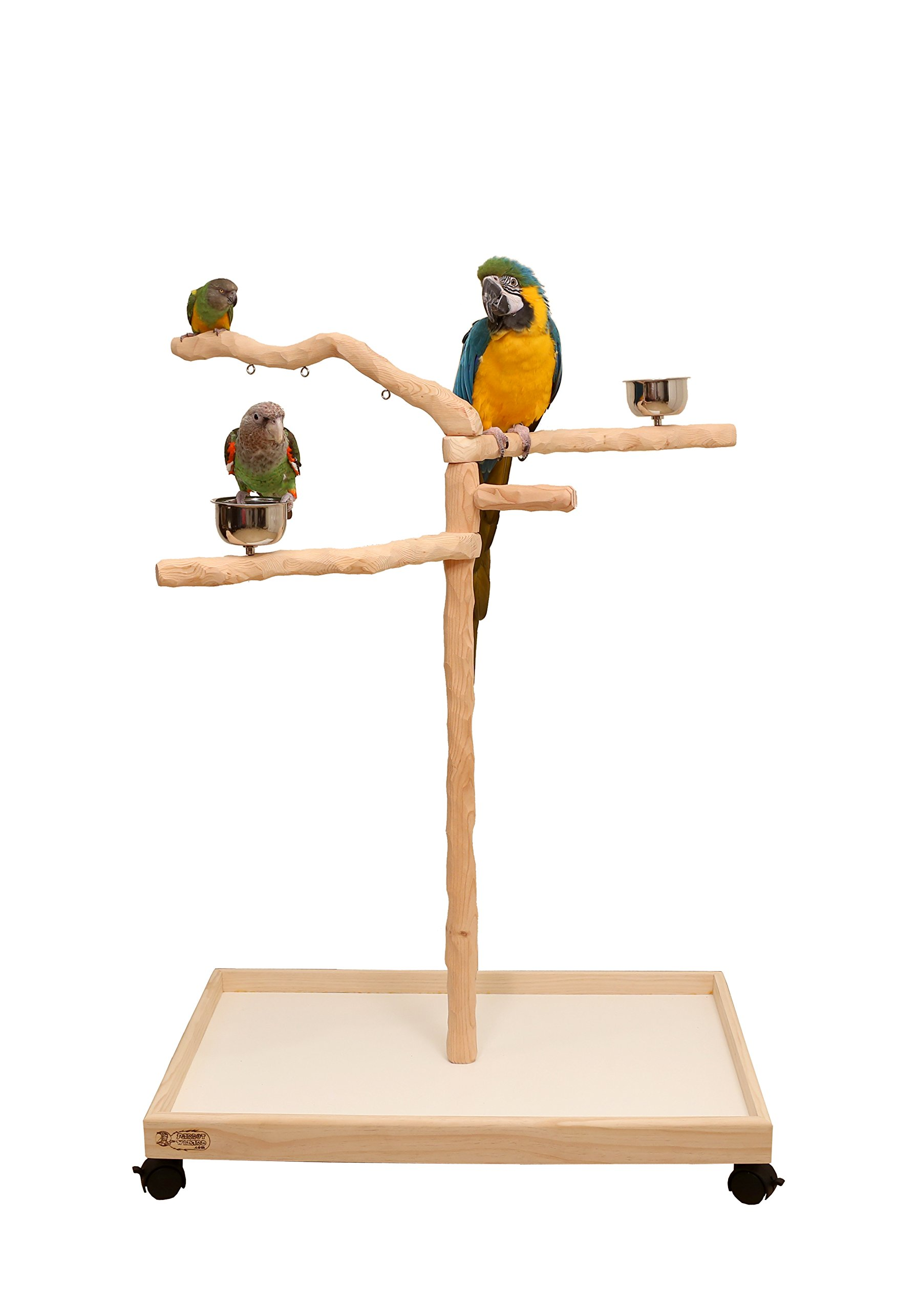 Perfect Tree for Parrots