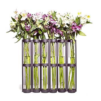 Danya B Tall Six Tube Hinged Vase. Amazon com   Danya B Tall Six Tube Hinged Vase   Decorative Vases