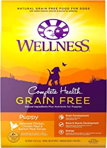 Wellness Natural Pet Food Complete Health Natural Grain Free Dry Puppy Food, Chicken & Salmon, 12-Pound Bag