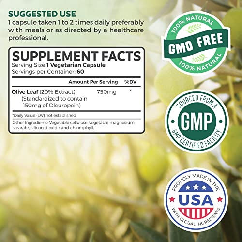 Olive Leaf Extract Non-GMO Super Strength 20 Oleuropein