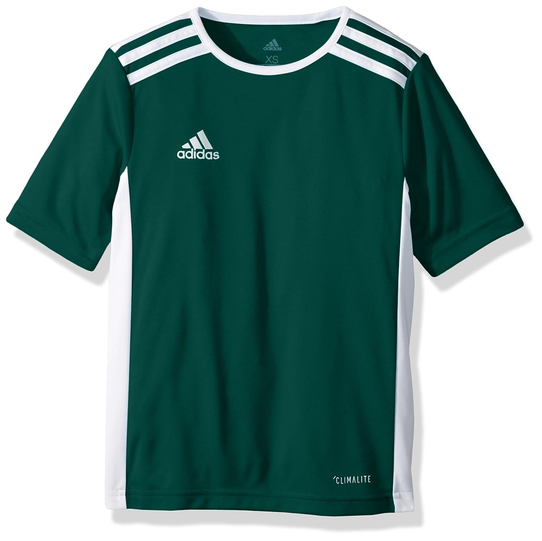 Adidas エントラーダジャージー 男子用 サッカー 18。 B071KHNR6S Large|Core Green/White Core Green/White Large