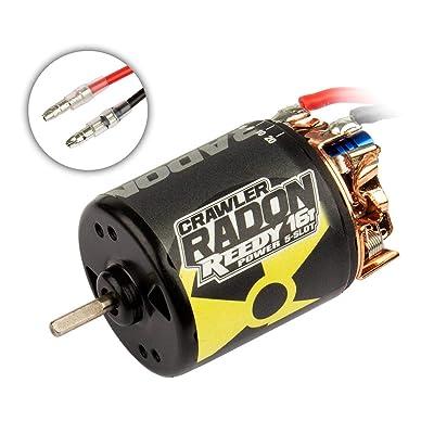 Team Associated Reedy Radon 2 Crawler 5-Slot Brushed Motor, 16T, 1850kV: 3.5mm Bullet, ASC27424: Toys & Games