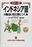 カラー版 CD付 インドネシア語が面白いほど身につく本 (語学●入門の入門シリーズ)