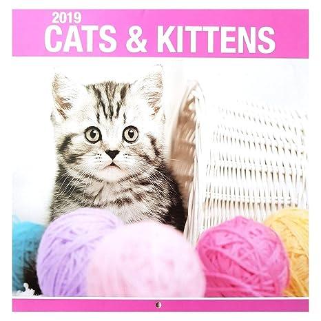 2019 gatos & gatitos cuadrado pared calendario lindo hogar oficina regalo de Navidad