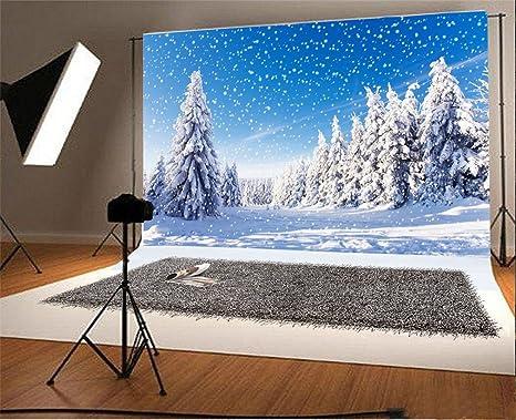 YongFoto 3x2m Fondos Fotograficos Navidad Pino Paisaje Cubierto Nieve Copos Nieve Sol Naturaleza Invierno Feliz año Nuevo Fondos para Fotografia Fiesta Retrato Personal Estudio Fotográfico Accesorios: Amazon.es: Electrónica