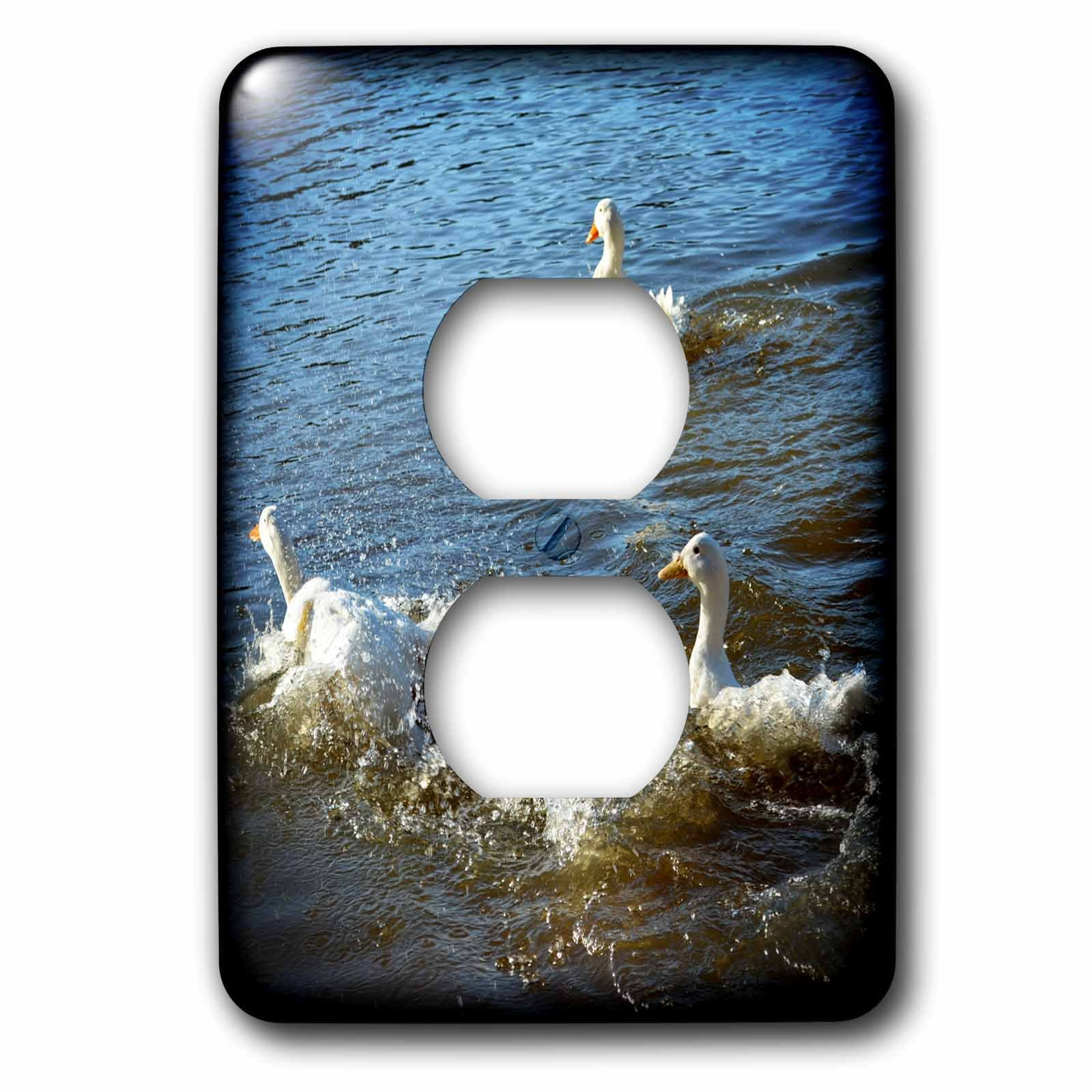 3dRose WhiteOaks Photography and Artwork - Ducks - Splish Splash is a group of ducks splashing around - Light Switch Covers - 2 plug outlet cover (lsp_265325_6)