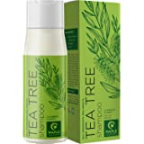 Tea Tree Shampoo for Oily Hair - Deep Cleansing Shampoo for Greasy Hair and Oily Scalp Care - Sulfate Free Clarifying Shampoo
