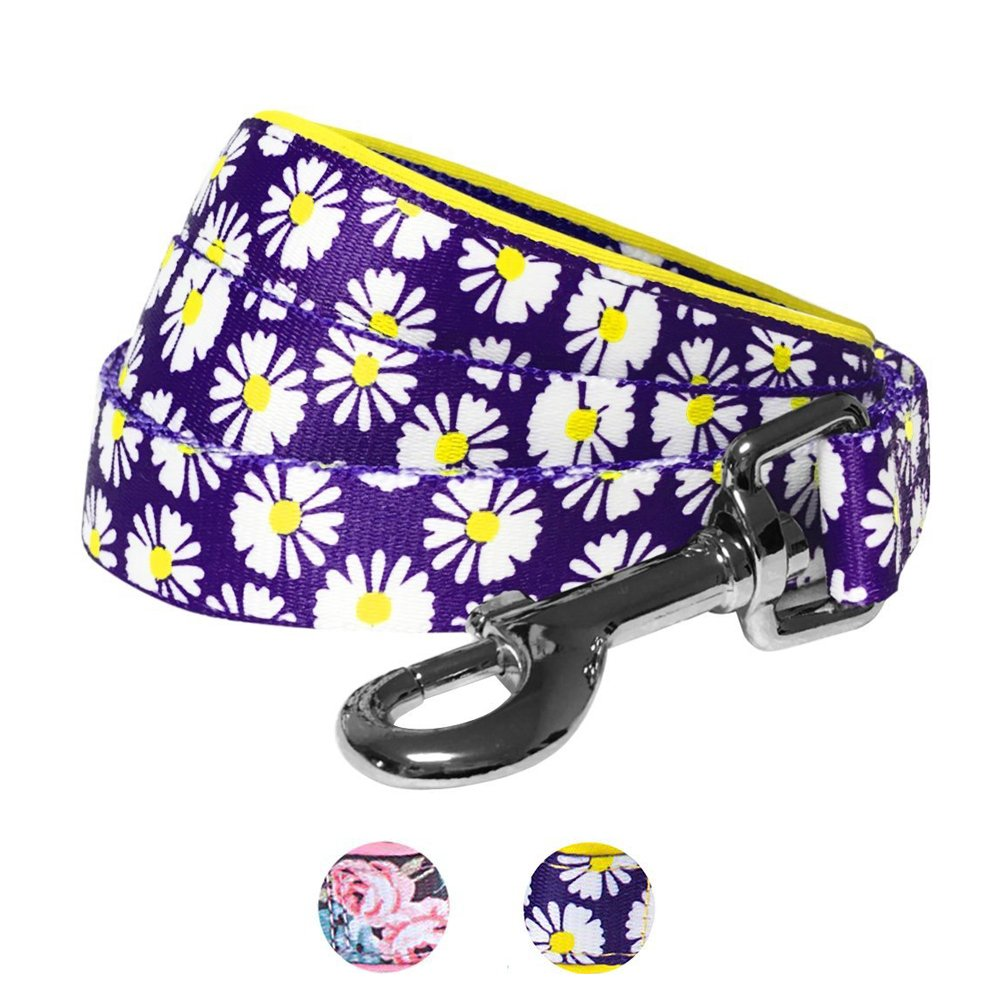 Blueberry Pet 2 Patterns Loving Daisy Prints Dog Leash with Soft & Comfortable Handle, 5 ft x 3/4'', Medium, Leashes for Dogs