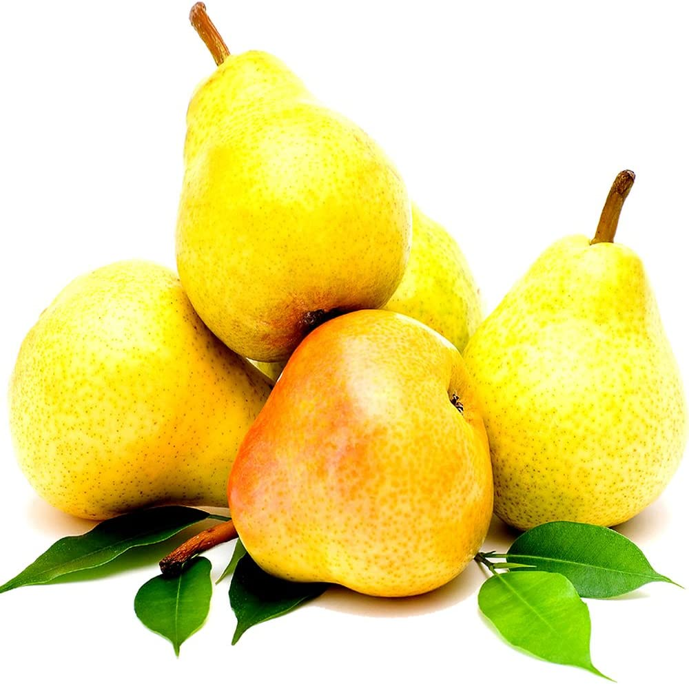 French Pears Candle Making Fragrance Oil, Diffusers, Oil Burners 50ml/1.7oz Vegan & Cruelty Free