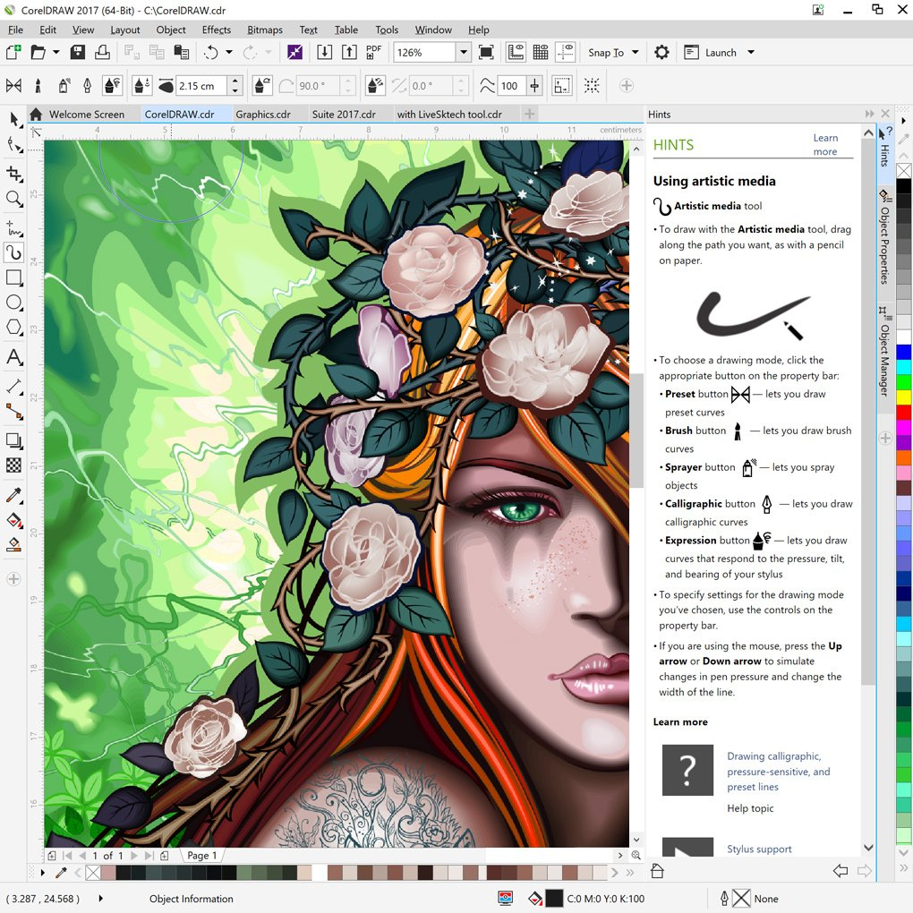 Amazon.com: CorelDRAW Graphics Suite 2017 - Amazon Exclusive ...