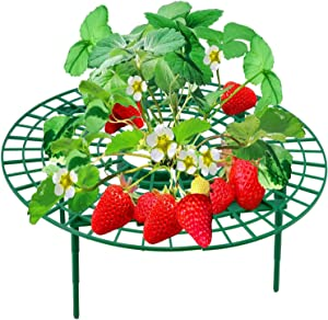 YGAOHF 5 Pack Adjustable Strawberry Plant Supports, Strawberry Growing Racks Frame, Strawberry Supports Stand Balcony Vegetable Rack, Keeping Fruit Elevated to Avoid Ground Rot