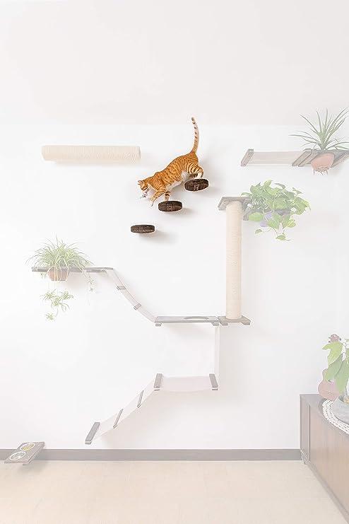 Cat Walk – Estantería de Pared Redonda de Madera de 20 cm para decoración o Plataforma con Forma de Gato – Barra Grande para Gatos – Crear un Centro ...