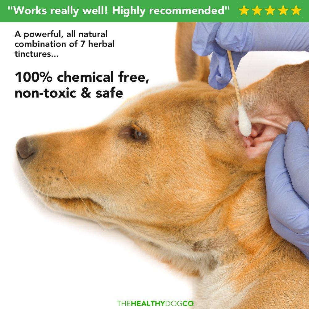 Limpiador completamente natural de oídos para perros | 250ml | Ponga fin al sufrimiento de sus perros en 2-3 días | Elimina los olores, la picazón y las ...
