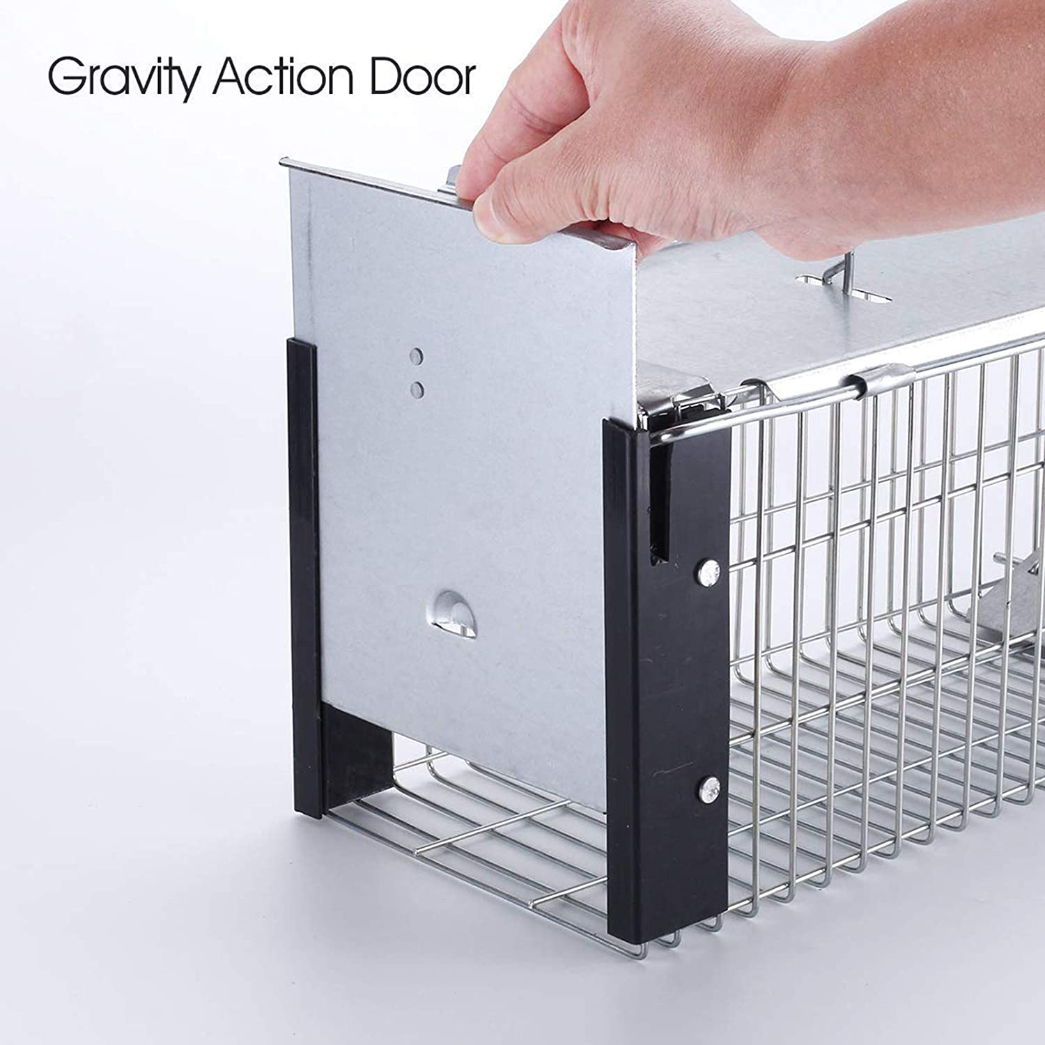 Faicuk Heavy Duty Squirrel Trap Chipmunk Trap Rat Trap and Other Similar-Size...
