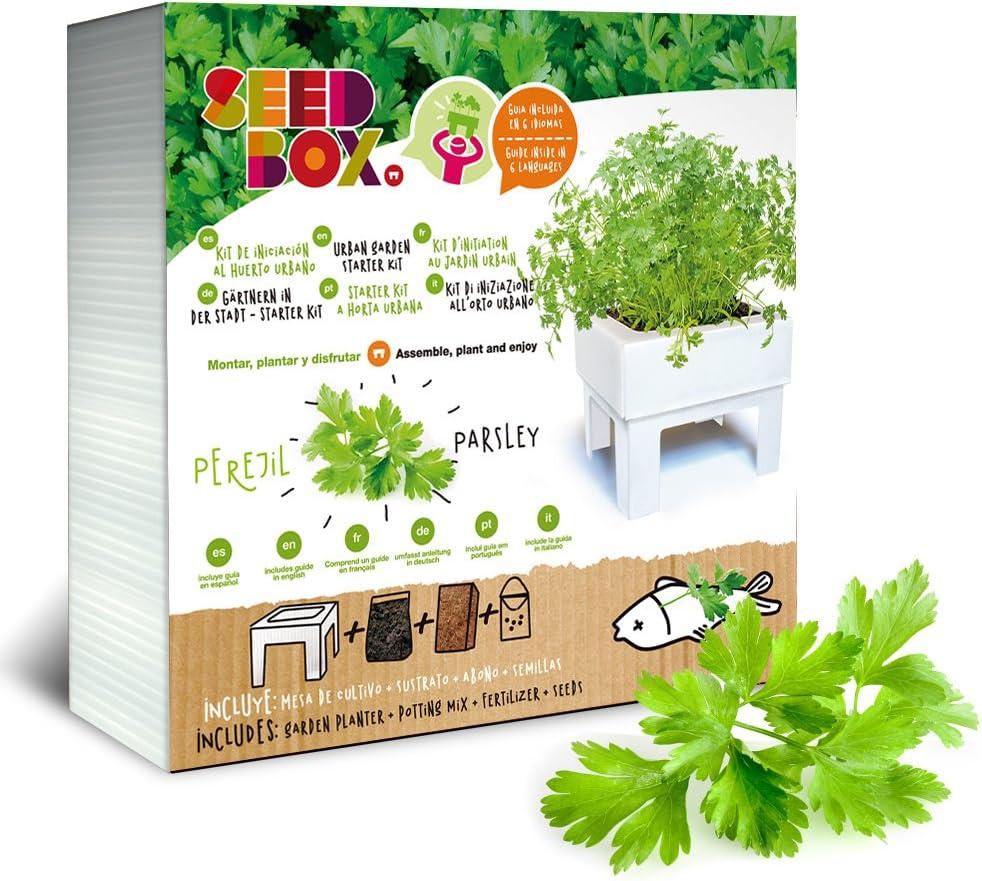SeedBox SBCUPP-Pimientos de padrón: Amazon.es: Jardín