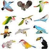 SUPER TOY Beautiful Birds Toy Figure Play Set for Kids (Pack of 12)