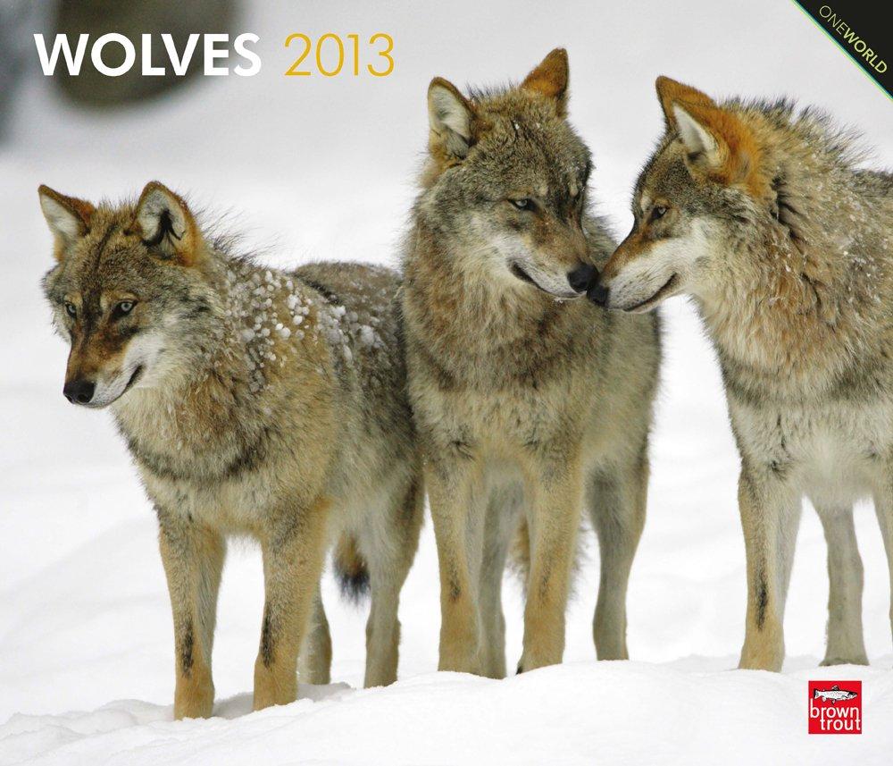 Wolves 2013 - Wölfe - Original BrownTrout-Kalender - Deluxe