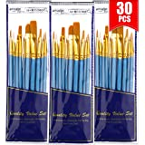 BOSOBO Paint Brushes Set, 30 Pcs Round-Pointed Tip Artist Paintbrushes for Acrylic Watercolor Oil Painting, Face Body Nail Ar