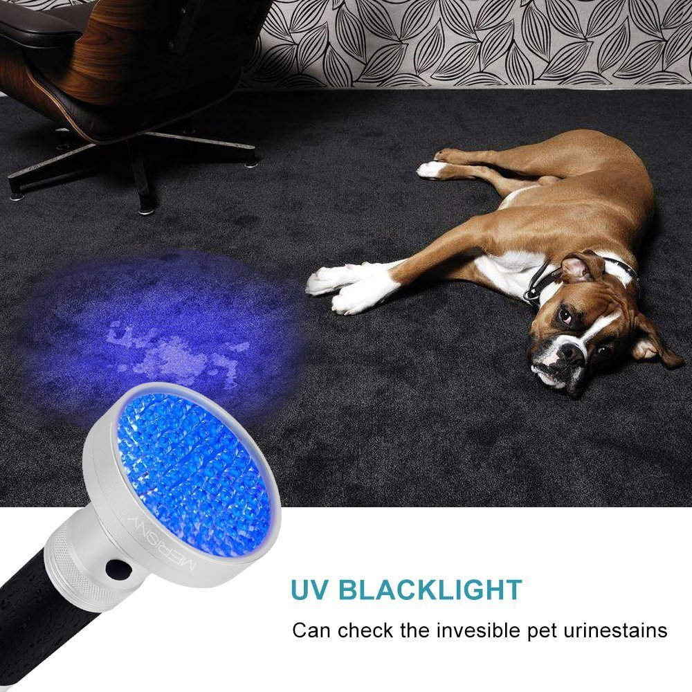 UV Blacklight Flashlight - 100 LED Ultraviolet Flashlight Blacklight - Pet Urine Stain Detector by Merisny (Image #3)
