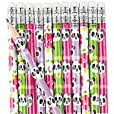 Fun Express Educational School Panda Pencils - 24 Pieces