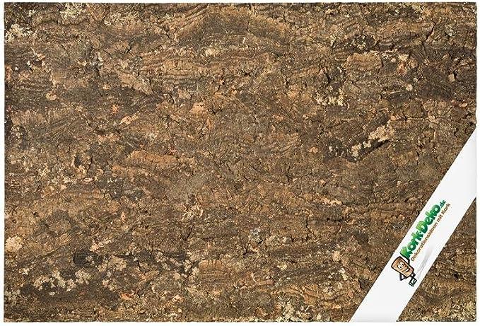 Kork-Deko Pared Posterior de Corcho (Pared Posterior de terrario), extragruesa (Pared Posterior de Corcho 3D, Fondo Terrario de Corcho Natural) 60 x 30 cm