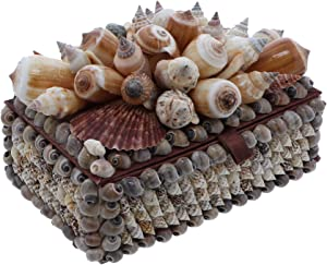 Li'Shay Treasure Box Trinket Jewelry Box with Mixed Seashells - 6 x 4 Inches