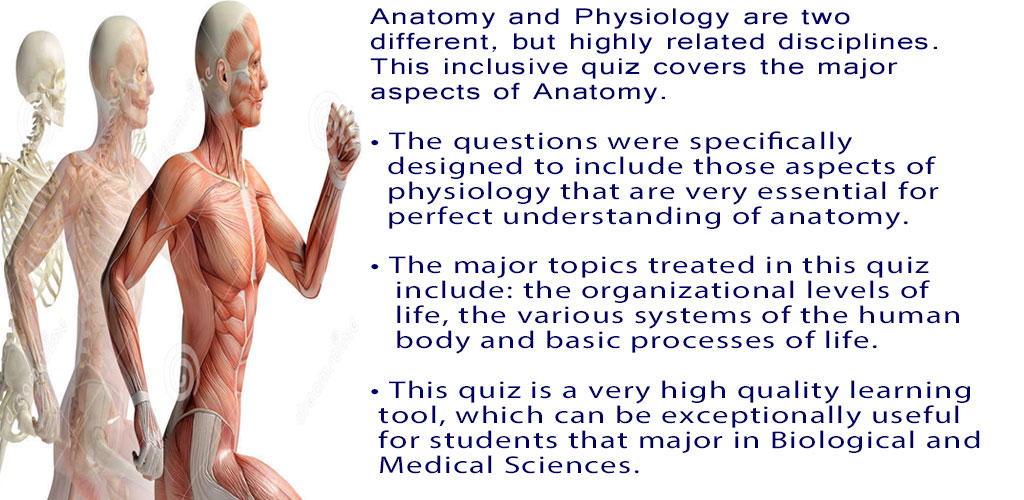 Amazon Anatomy Physiology Quiz Appstore For Android