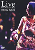 Live from Poetic Ore Tour [DVD]