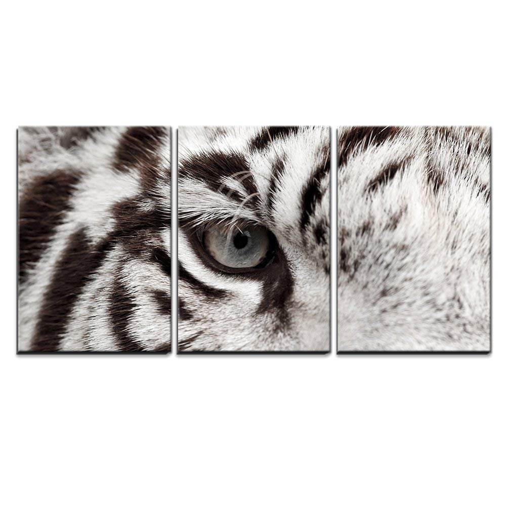 wall26 - 3 Piece Canvas Wall Art - Close Up of White Bengal Tiger Eye - Modern Home Decor Stretched and Framed Ready to Hang - 16''x24''x3 Panels by wall26 (Image #1)