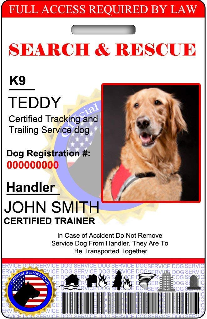 XpressID Holographic Search and Rescue Dog ID Card