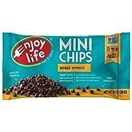 Enjoy Life Baking Chocolate, Soy free, Nut free, Gluten free, Dairy free, Non GMO, Vegan, Paleo, Semi Sweet Mini Chips, 10 Ounce Bag