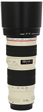 The 8 best canon ef 300mm f 4l is usm lens