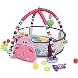 RTMAXCO Baby Play Mat (tapis de jeu bébé) and Infant Activity Gym Ball Pit, for Newborns, Babies and Toddlers, Plush Infant P