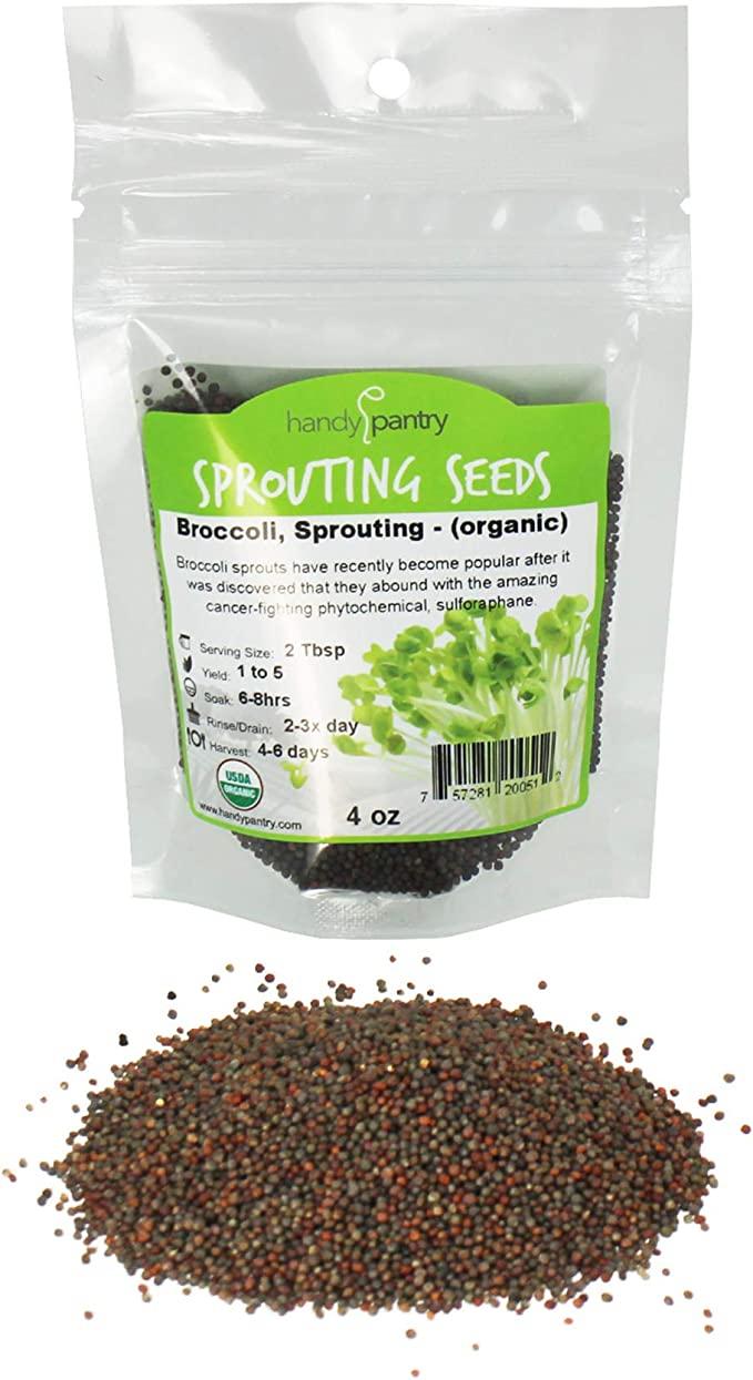 A super food packed with antioxidants and healthy nutrients. COOL BEANS n SPROUTS Brand Broccoli Seeds for Sprouting Microgreens,1 lb