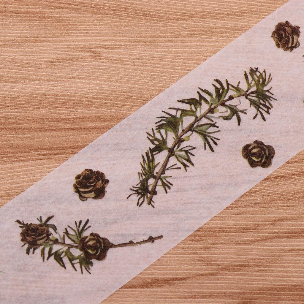 Cono de pino Baoblaze 2 Rollos 5M Cinta Adhesiva de Papel Washi Estampado de Plantas//Animales Etiqueta de Pared Pegatina Decorativa para Muebles Envoltura de Regalo