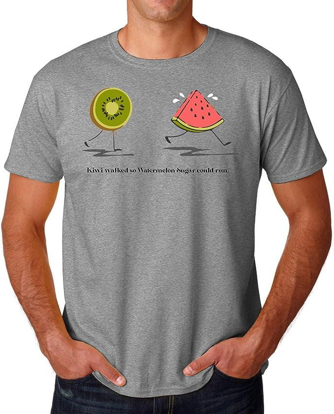 PasTomka Kiwi Walked S0 Watermelon Sugar Could Run Mens T-Shirt Hombre Camiseta Small: Amazon.es: Ropa y accesorios