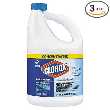 Amazoncom Clorox 764442854668 Liquid Bleach 121 Oz Bottle Case Of