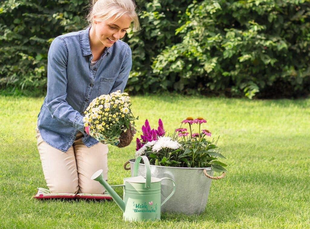 Regadera para el jardín, diseño de Hojas y Flores, pequeña decoración de Flores Verdes, con Texto: Amazon.es: Jardín