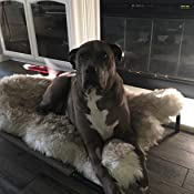 Amazon.com : PupRug Faux Fur Memory Foam Orthopedic Dog