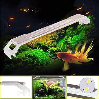 Acuario Lámpara de iluminación Acuarios Eco Bombilla LED Lighting 22 – 51 cm, 6 –