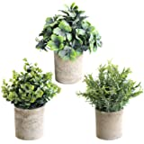 THE BLOOM TIMES Set of 3 Small Potted Artificial Plants Plastic Fake Greenery Boxwood Rosemary Mini Faux Plants in Pots for R