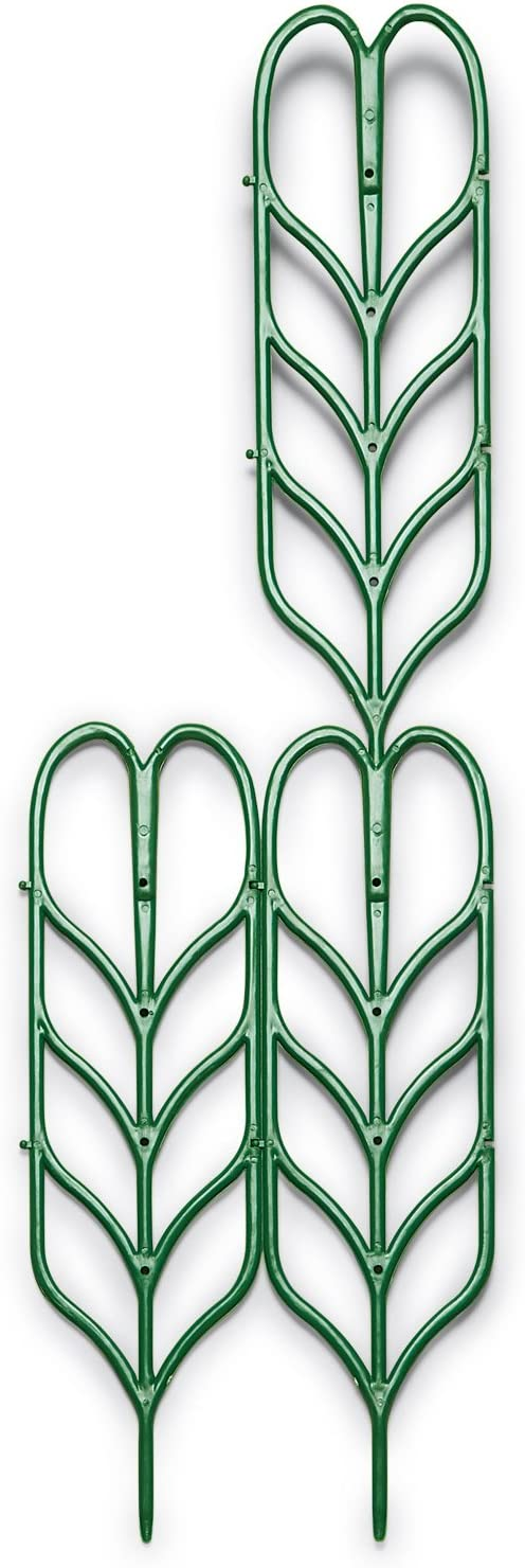 Plant Support for Indoor or Outdoor Climbing Plants Plant Trellis for Container Gardens Set of Three, Size Set of 3, Size Set of 3